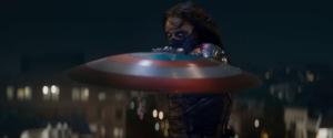 WS Shield